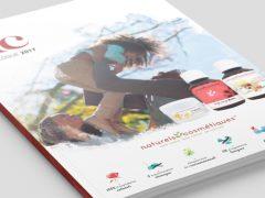 Concevoir une brochure ou une plaquette efficace pour votre entreprise
